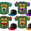 Minor League Baseball Team will Wear Teenage Mutant Ninja Turtles Jerseys This Season