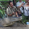 Incredible Footage of a Man Being Attack by a Crocodile at Zoo [Video]