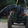 Record-Breaking 1,000-Plus-Pound Alligator Caught in Alabama River