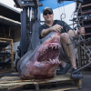 Angler Uses Bow and Arrow to Catch Record-Setting, 809-Pound Mako Shark