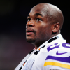 Adrian Peterson: Alleged Photos of Boy's Legs Show Extensive Cuts & Bruises [UPDATE]