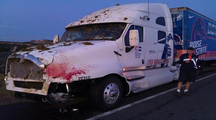 The Boise State Equipment Truck Hit a Cow and It Was a Bloody Mess