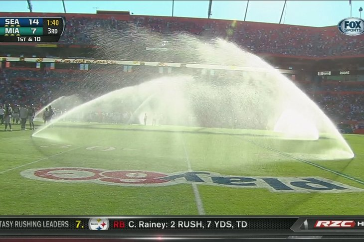 """abDolphins Embrace """"Buffalo Wild Wings Commmercial as Sprinklers Interupt Game Against Seahawks [Video]"""
