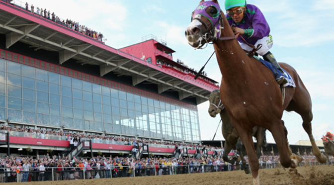 California Chrome Can Wear Nasal Strip in Belmont Stakes
