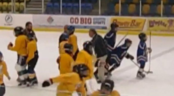 8-Year Old Russian Hockey Players Brawl After a Game [Video]